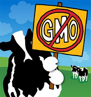 Gmo Statement Blog