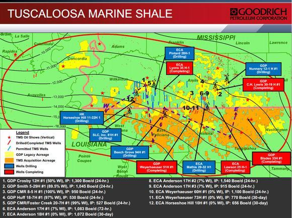 Goodrich Petroleum Corp Tms