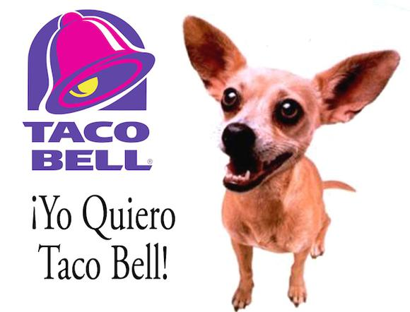 Yo Quiero Taco Bell Chihuahua Copy