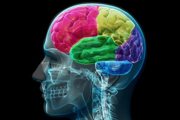 Brain Pick Flickr Allan Ajifo