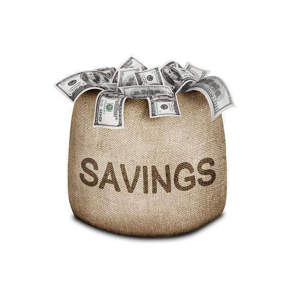 Savings Bag