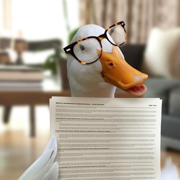 Afl Duck