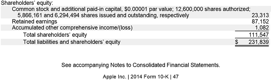 Apple Shareholders Equity