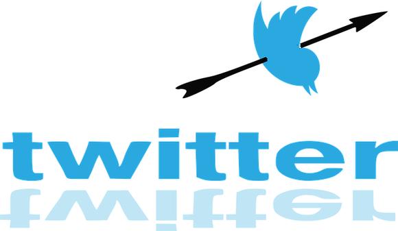 Twitter Bird Hunt