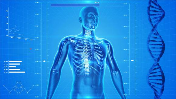 Skeleton Pixabay