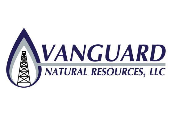 Vnr Logo