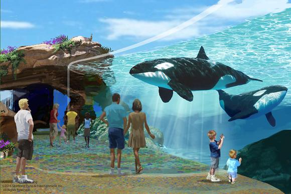 Seaworldblueworld