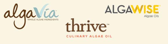 Terravia Logo