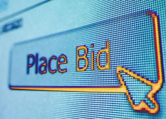 Online Auction Image Crop