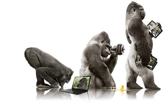 Corning Stock Gorilla