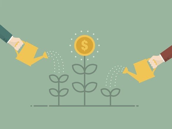Cartoon Money Plant Growing Watering