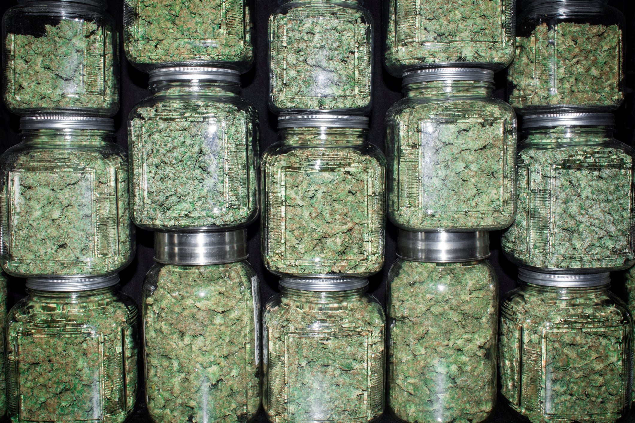 These States Are the Most Likely to Legalize Marijuana in November | The Motley Fool