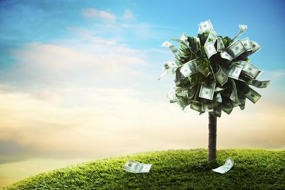 Dividend Stocks Money Tree