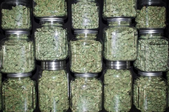Marijuana Cannabis Buds Stacked In Jars Getty