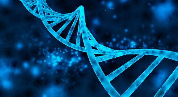 A stylized strand of DNA