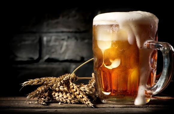 A mug of beer along side wheat grains.
