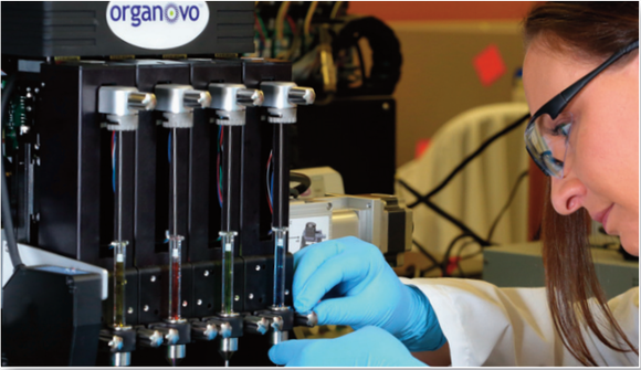 Organovo employee working in the lab.