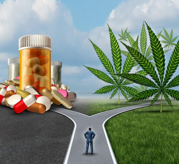A person deciding between marijuana and opioid pills.