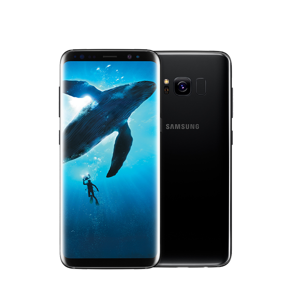 Image of a Samsung Galaxy S8.