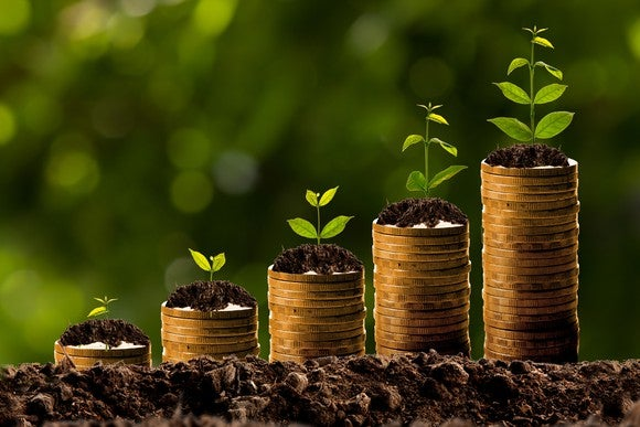 Successive stacks of coins sprouting larger and larger plants, symbolizing growth.