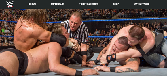 WWE wrestling match.