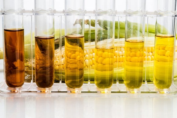 Test tubes with various types of liquid corn products in them, and a cob of corn in the background.