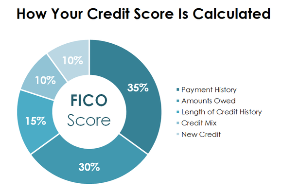 The five components of a person's credit score.