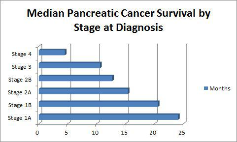 Study sheds light on factors that may contribute to pancreatic cancer