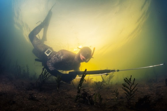 Scuba diver spear fishing