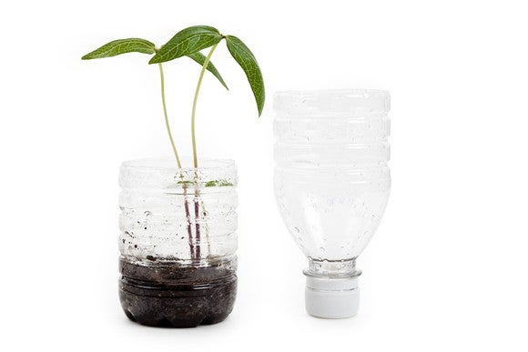 A plastic bottle cut in half, with the bottom half containing soil and a plant.