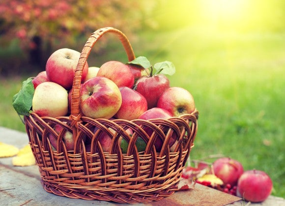 A basket of apples sitting on a table outside