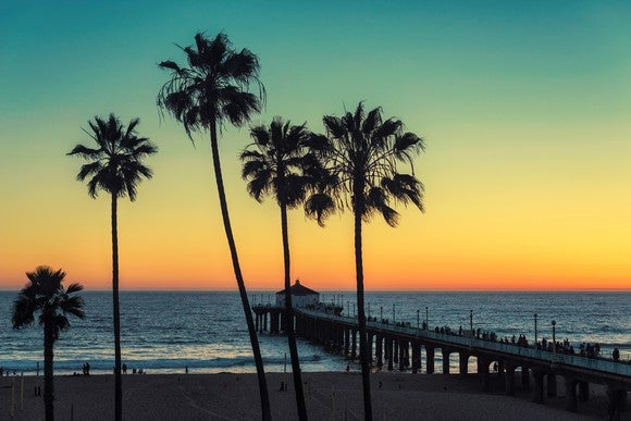 Palm trees against a sunset