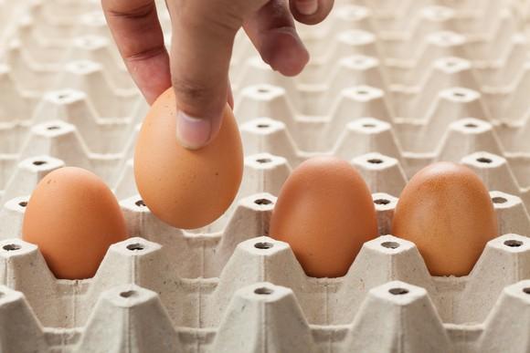 A hand placing an egg carefully into an egg carton.