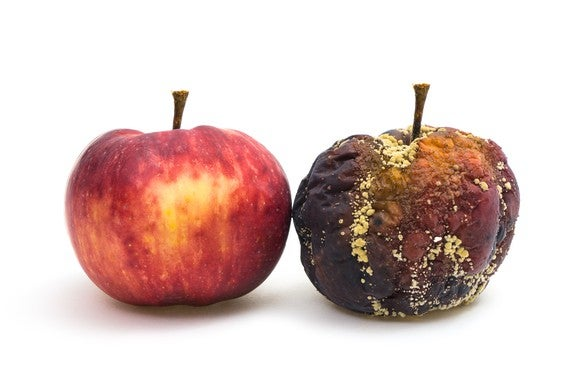 A fresh and a rotten apple next to each other