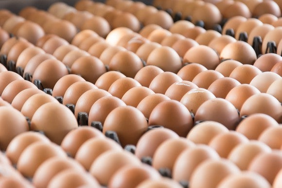 Rows of brown eggs in cartons.