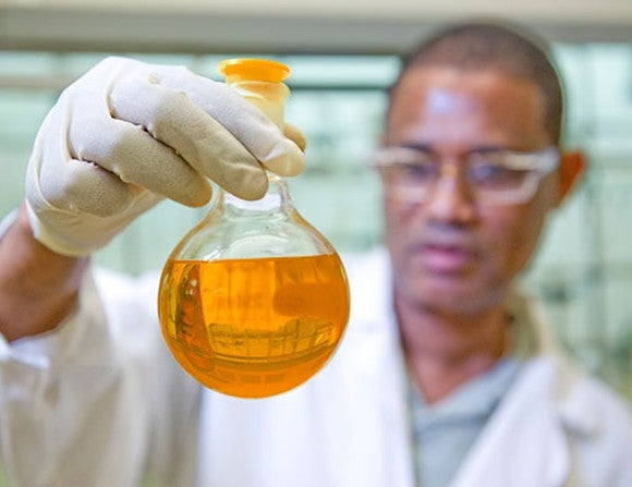 A scientist examines fluid in a test tube.