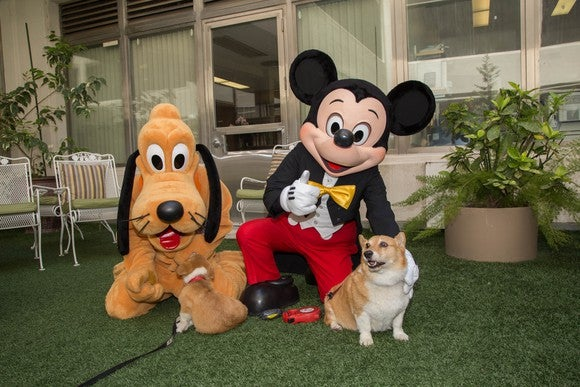 Pluto and Mickey Mouse pose with California Governor Brown's dogs.