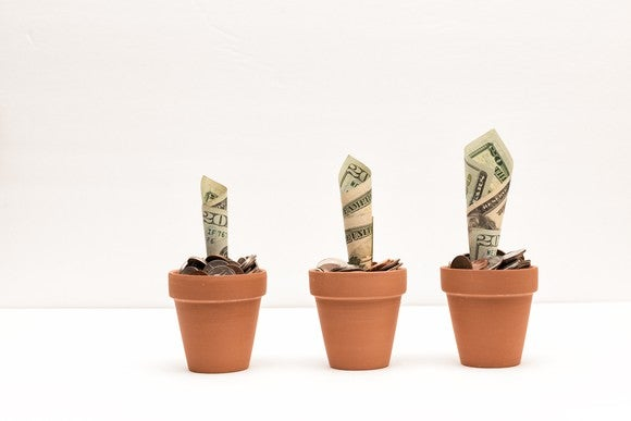 Money pretended to be planted in pots and growing like flowers.