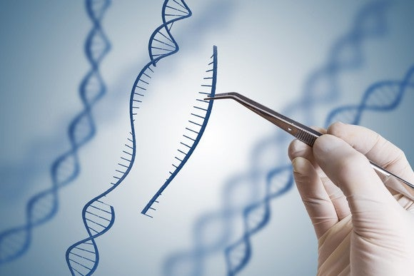 Hand wearing rubber glove and using an instrument to pull out a piece of DNA, DNA editing concept image