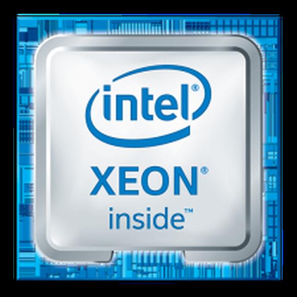 Intel Xeon chip.