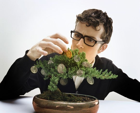 A young, bespectacled man tending a bonsai tree with coins hanging on the branches