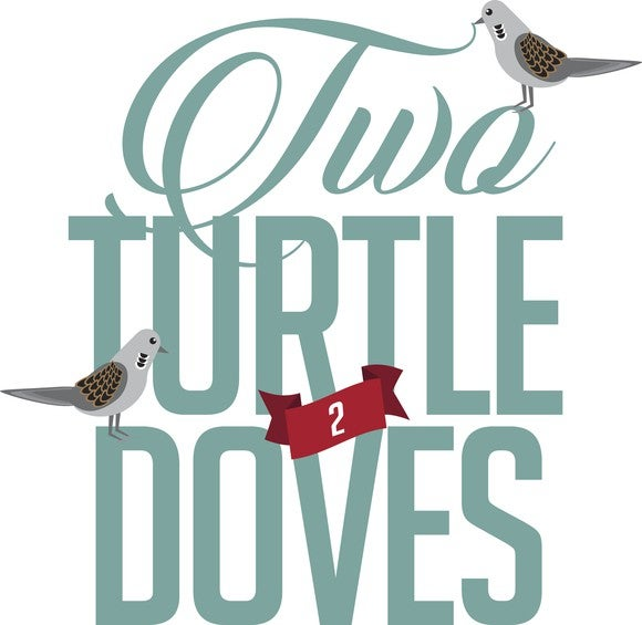 An illustration showing tow turtle doves