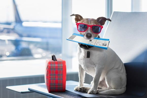 A dog sitting in an airport with a plane ticket in his mouth.