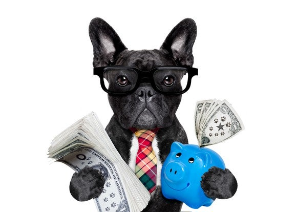 A black dog wearing glasses and a tie holding a piggy bank in one paw and paper money in the other paw.