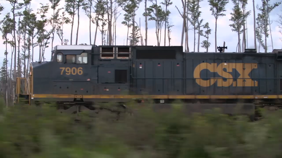 CSX engine going past a row of tall thin trees and bushes.