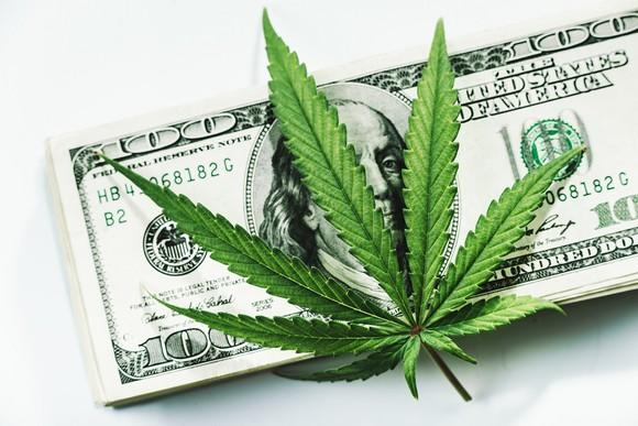 Marijuana leaf resting on top of a $100 bill.