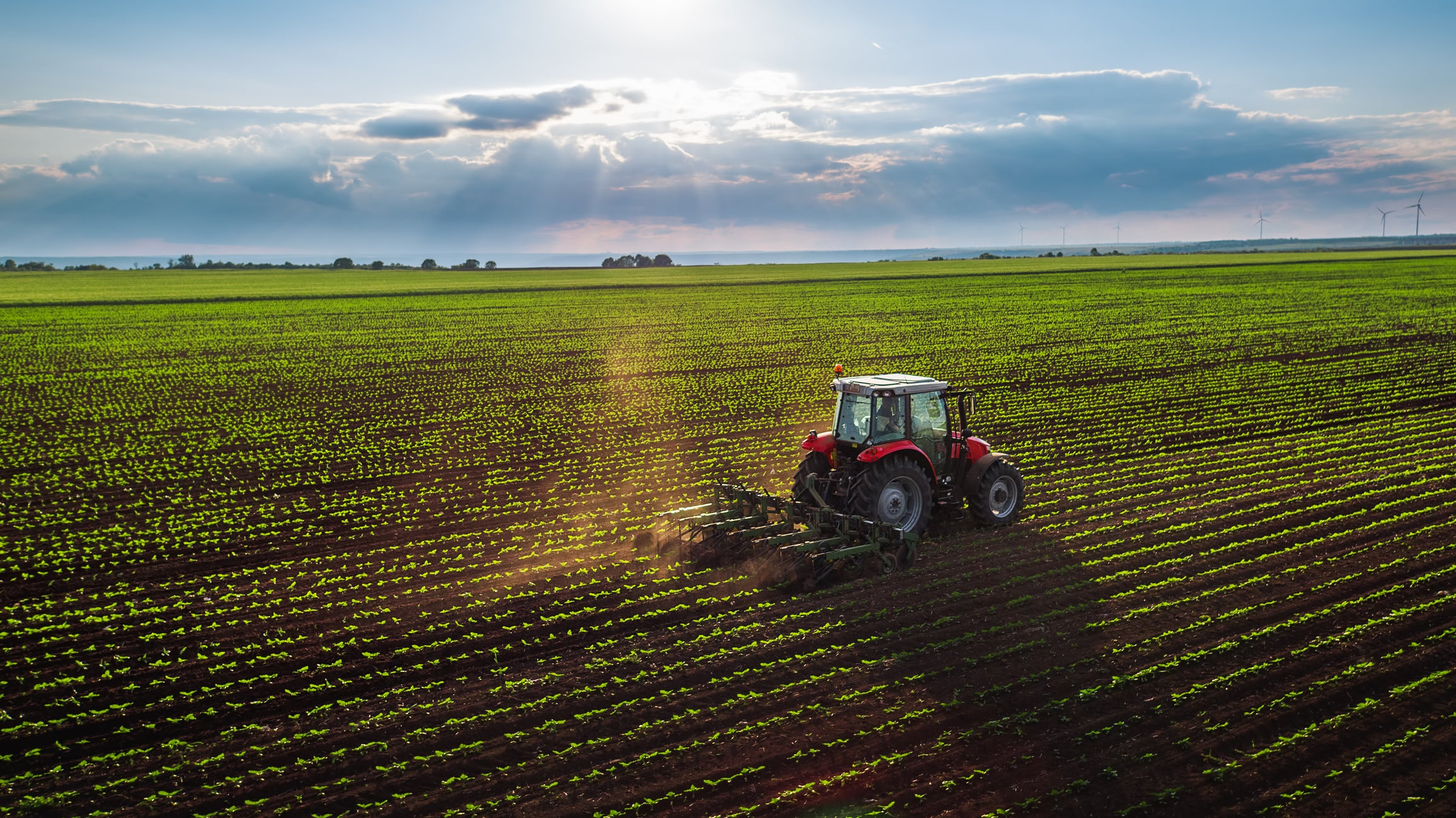Top Stocks in Agriculture | The Motley Fool