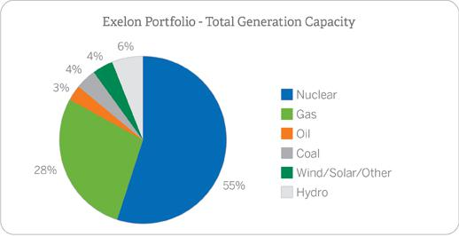 Exelon Stock Energy Portfolio