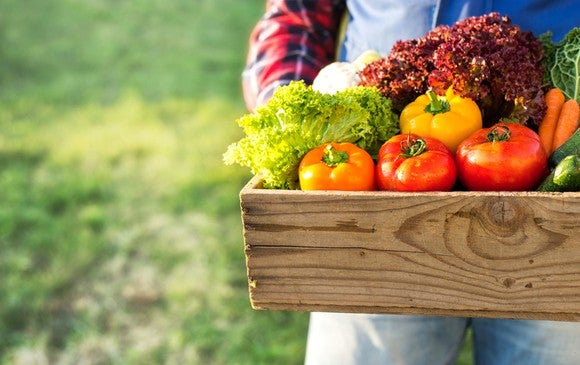 Farmer holding a wooden box of lettuce and colorful bell peppers.