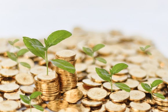 Seedlings sprouting from gold coins/